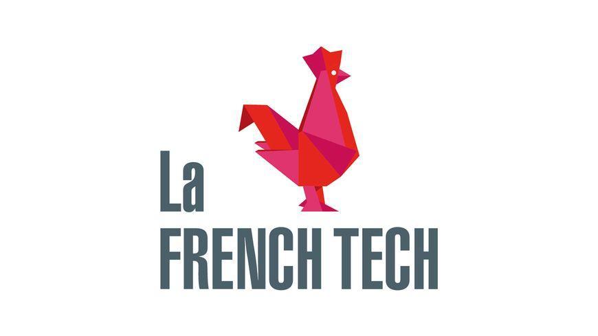 Exclu. Innovation en Outre-mer : Mayotte et Martinique vont recevoir leurs labellisations « French Tech »