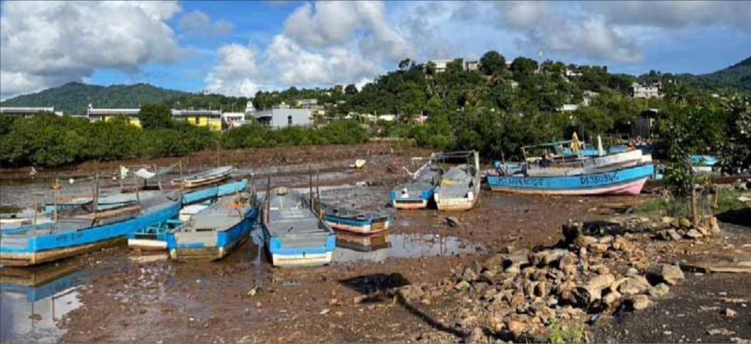 Vers une professionnalisation de la filière pêche à Mayotte ?