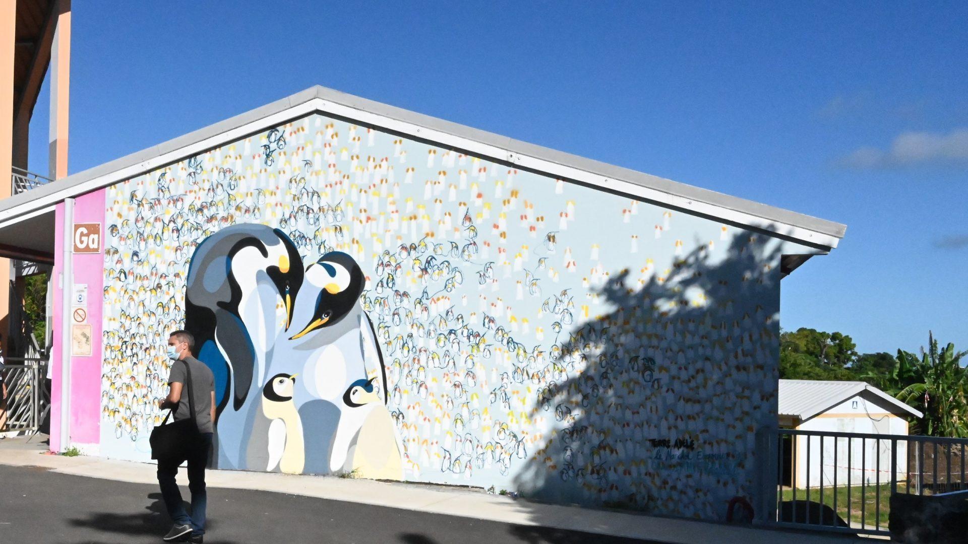 La Biodiversité des TAAF à travers le Street-Art