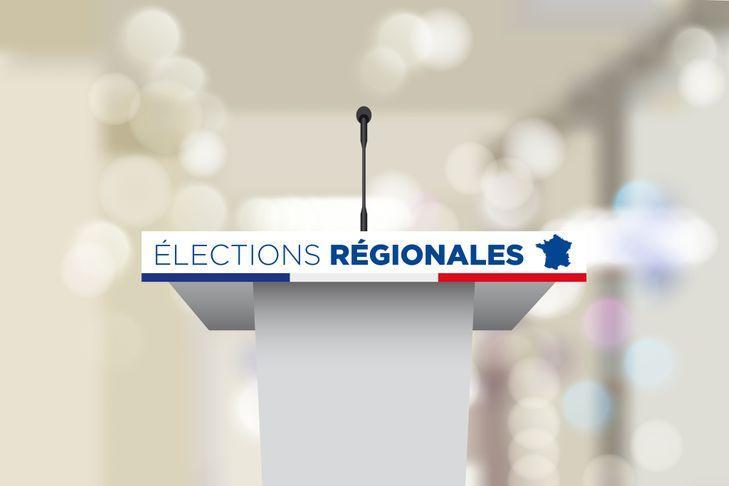 Régionales en Guadeloupe : Des candidatures en cascade