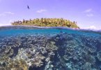 Loi Climat : L'Assemblée nationale adopte un renforcement de la « compensation carbone » dédiées aux aires marines