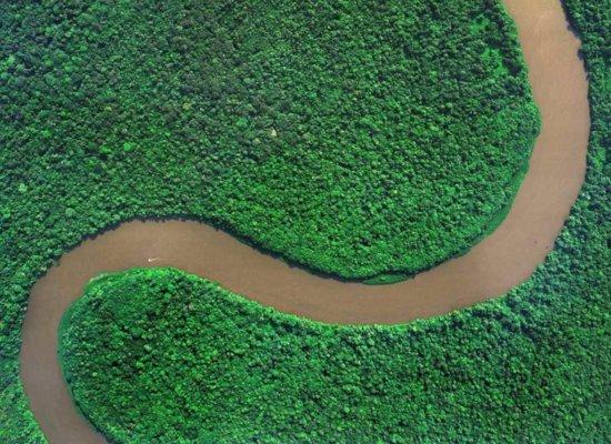 En Guyane, un biocarburant à base de micro-algues à l'étude